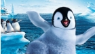 Happy feet filmpjes
